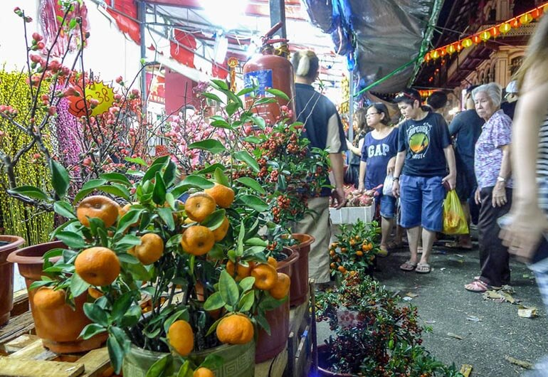 Chinese New Year Oranges