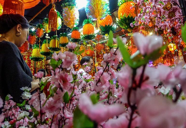 Chinese New Year Plants for Decorations